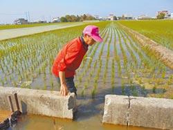 春耕灌溉水吃緊 啟動深水井