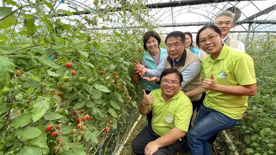 台南市長黃偉哲(左二)、農業局長謝耀清(右後)15日在學甲與30多位青農面對面座談,協助青農解決困境、增進返鄉意願。(莊曜聰攝)