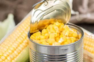 玉米罐頭有幾根玉米?實測網看傻