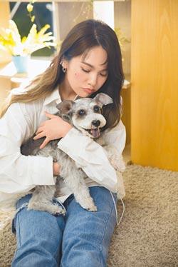楊丞琳新歌〈泥土〉獻愛犬
