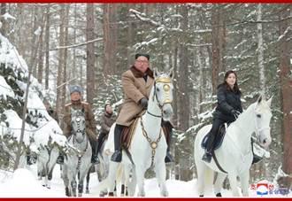 北韓自俄進口純種馬12匹 金正恩上白頭山騎了一匹