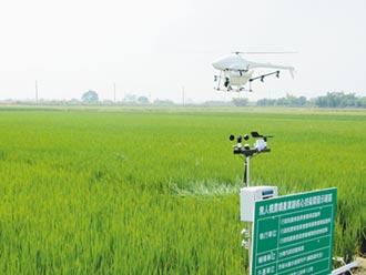 正面表列禁飛無人機 青農有異見