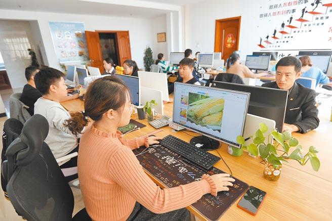河北一農產品加工企業的銷售人員透過互聯網銷售產品。(新華社資料照片)