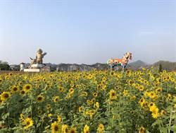 228連假遊走馬瀨農場  身分證號碼有2、2、8免費入園
