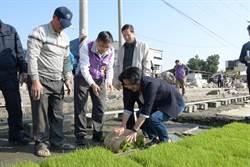 王惠美參觀水稻育苗中心 大讚農民辛勞種出優質好米