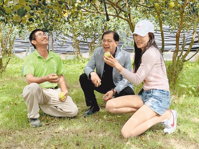 高雄市政府農業局長吳芳銘(中)為推銷在地農產,找來網紅高鈞鈞(右)前進型農胡進成(左)經營的棗子園,開直播現採現吃。(高市府農業局提供/林宏聰高雄傳真)