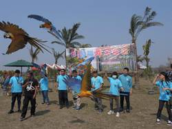 台南白河木棉花季22日登場 群鸚放飛先暖身