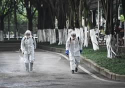 生態災難!陸猛噴消毒水致野生動物大量死亡