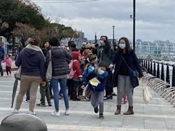 滿12歲小6生不能領兒童口罩 王鴻薇:恐成防疫漏洞
