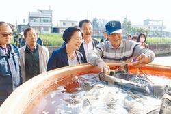 王惠美參觀育苗中心 大讚彰化米