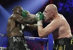 拳擊》世界最強男人!泰森福瑞打倒懷德
