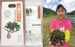 藻健康活力麵 3月赴新加坡參展
