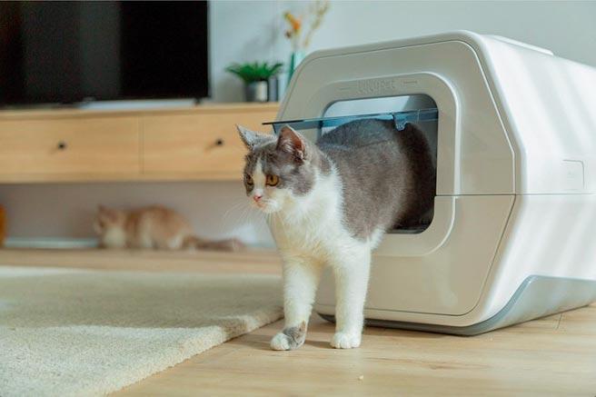 台灣新創公司LULU pet的智慧貓砂盒,可分析貓的體重變化、排泄物來判斷健康,並提供飼主就醫建議。圖/載自網路