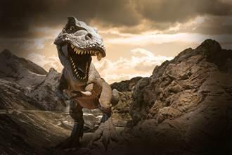恐龍體溫究竟幾度 美最新研究揭密