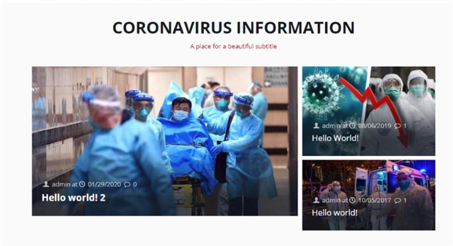 以新型冠狀病毒為題的偽裝網站(圖3)。(Check Point提供/黃慧雯台北傳真)