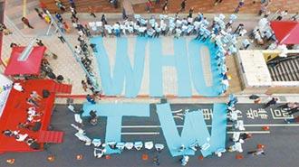 專家傳真-從台灣參與WHO專家會議 看企業如何突破逆境