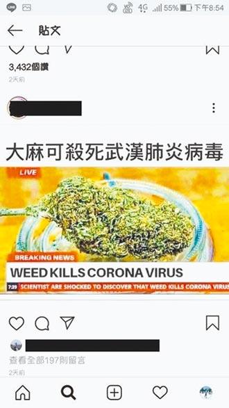 散布大麻可殺病毒 謝和弦遭送辦