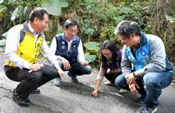 縣長林明溱會勘竹山鎮各巷道路面毀損及排水設施 將立即改善