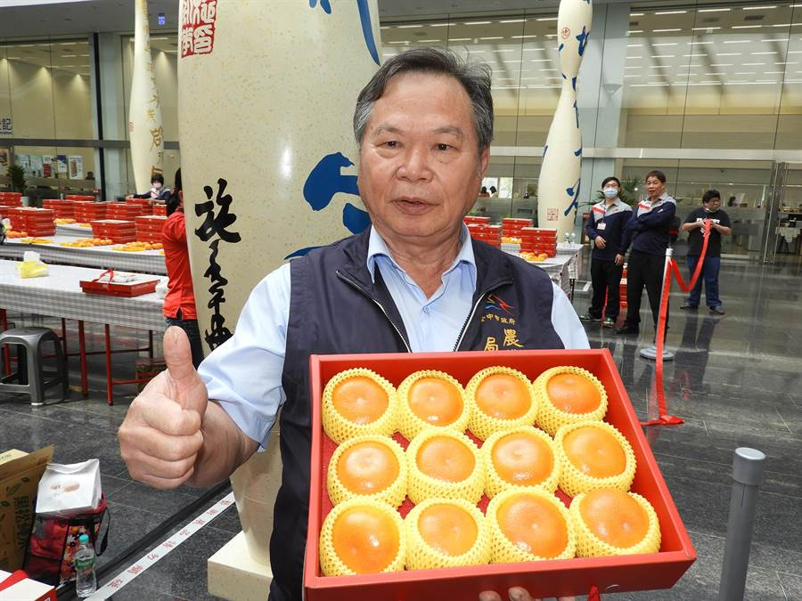 農業局長蔡精強指出,中市的茂谷柑皮薄汁多且酸甜適中,入口後喉韻佳並帶有柑橘果品的特殊香氣。(陳世宗攝)