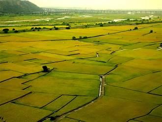 台中國土計畫審議  市府:不影響糧食安全