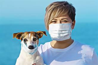 戴口罩前沒做這動作 病毒更易帶入口鼻