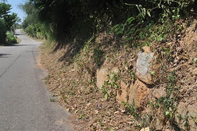 路經「文台寶塔」的路上,可見夯土與石塊的金門城遺址。(李金生攝)