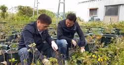 韓國瑜當北農總經理 昔日關鍵竟然是他!