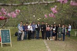 九族櫻花祭第2波 富士櫻盛開登場