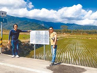 池上米外銷成長 大陸台商搶購