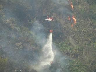 大埔事業區林班地火災 空勤直升機支援滅火