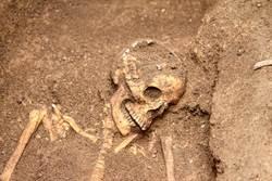 唐朝公主古墓 驚見男子跪坐千年