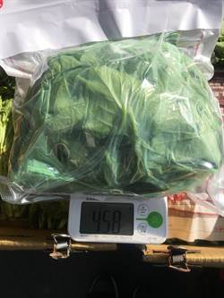 北市抽驗蔬果農藥  不合格率達13.7%