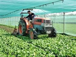 肺炎疫情打擊農業 雲林農田耕鋤、噴藥放棄採收