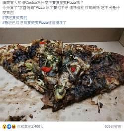 去好市多買「京醬披薩」 一看成品他崩潰:根本黑暗料理