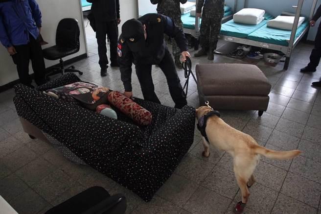 陸軍緝私犬掃毒。陸軍提供