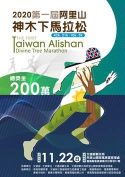 《產業》首屆阿里山神木下馬拉松,延至11月22日舉辦