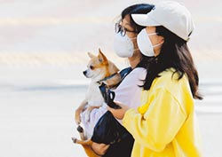南韓限購口罩 每人每周2個
