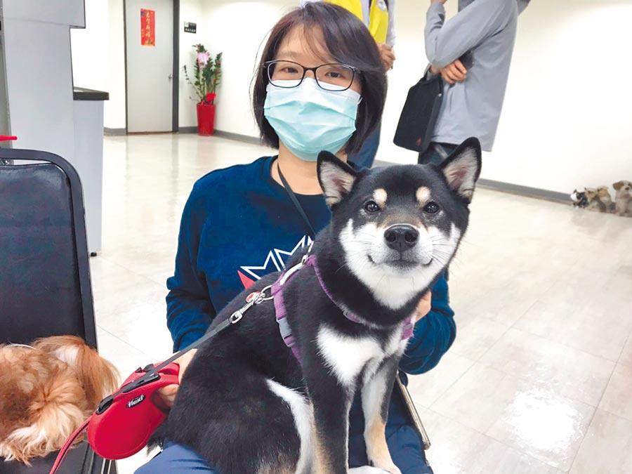 台北市議員楊靜宇9日指出,北市今年1、2月寵物救援數較去年增加近2成,疑似出現棄養潮。(譚宇哲攝)