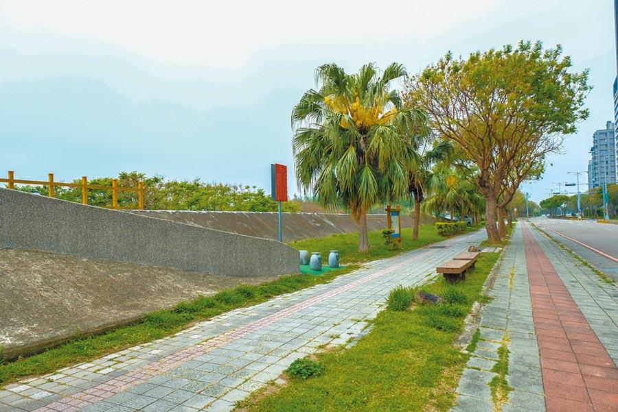 縣府計畫將興隆路堤岸,打造為頭前溪北岸櫻花步道。(羅浚濱攝)