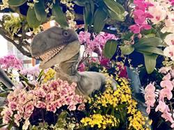 左鎮化石園區恐龍與蘭花相遇 激出趣味火花