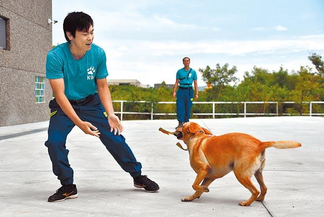 台東縣消防局的搜救犬小組成軍4年,平常要接受嚴格的訓練。(莊哲權攝)