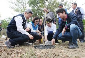 植樹節 大肚山森林復育中心啟動 恢復大肚山原始風貌