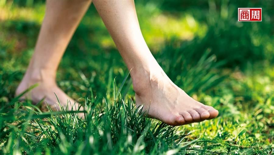 走入山林,來場森林療癒,森林調養你的身體,也撫慰人心。(攝影者.劉煜仕)