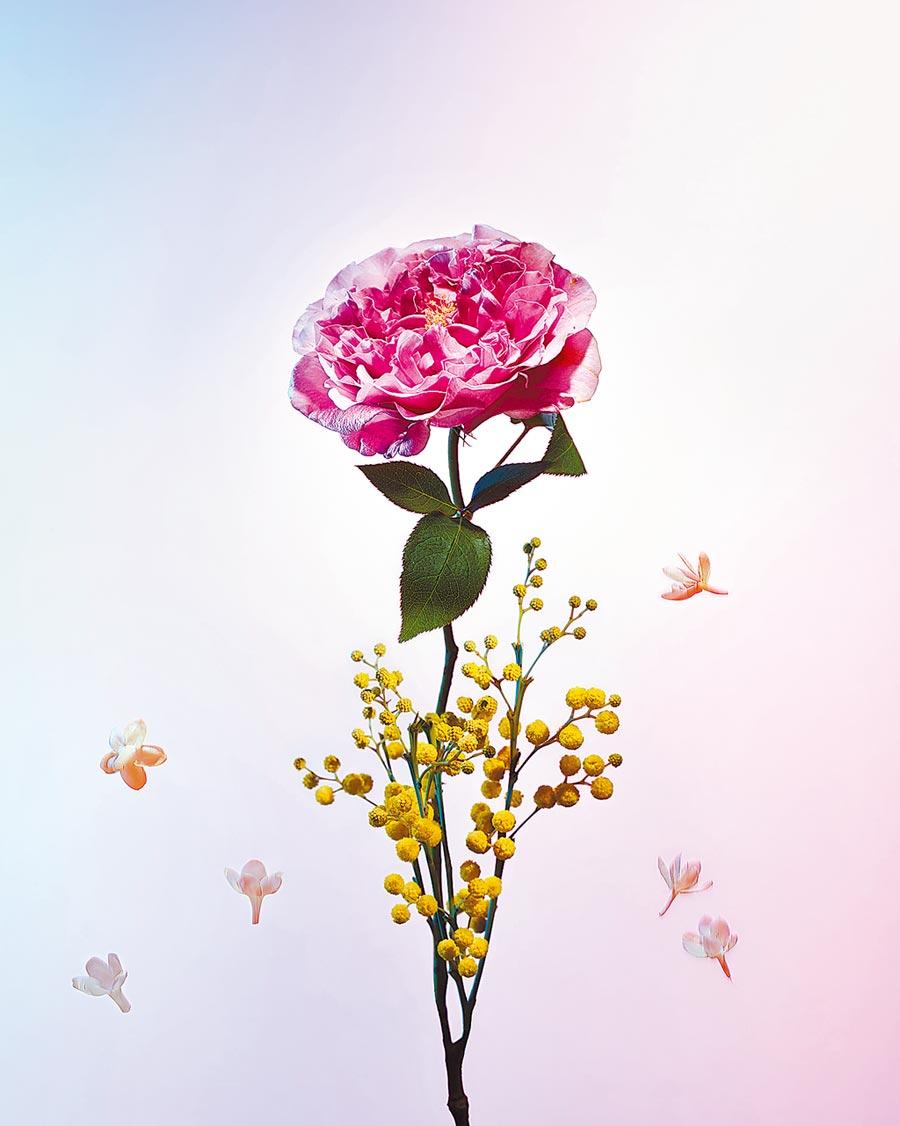 路易威登全新香氛Heures d'Absence香水系列形象圖。(路易威登提供)