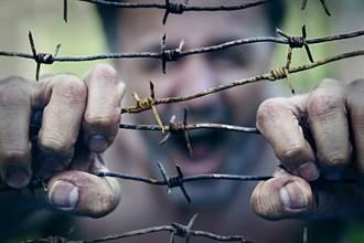 鐵絲網無法擋子彈 為何士兵卻超怕?