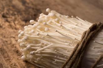 韓國金針菇含致命病毒 已致4人死亡
