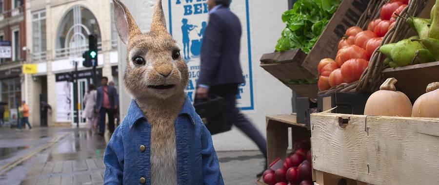 比得兔這回前進都市,展開全新冒險。(索尼影業提供)
