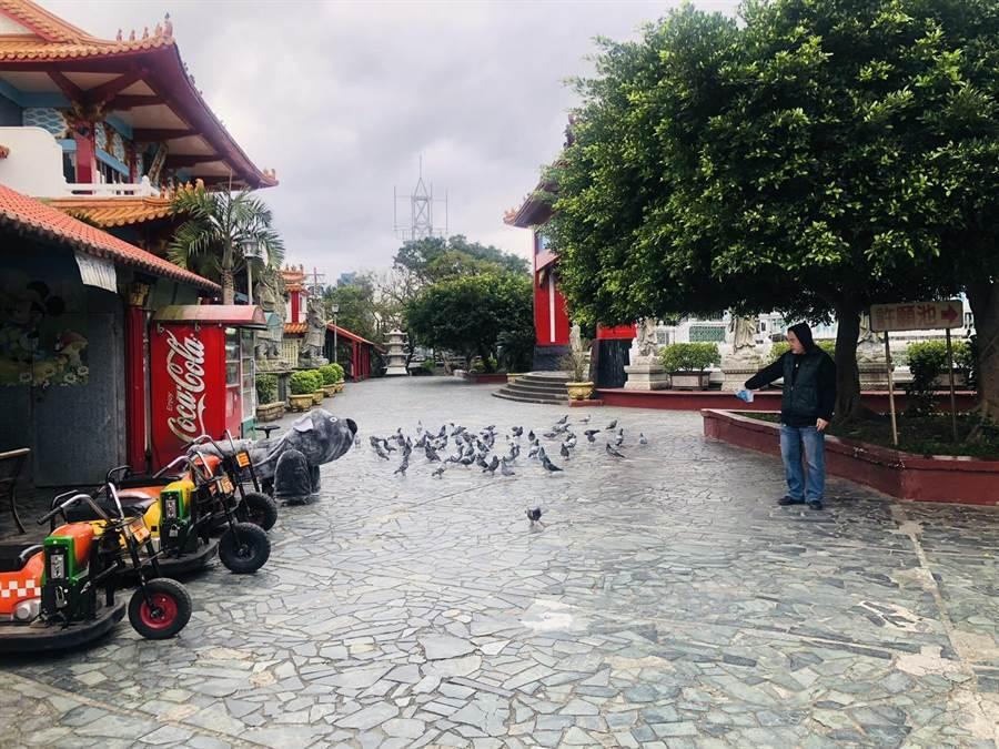基隆市中正公園自1950年闢建至今已使用超過60年,其中更有一大群鴿子會在大佛旁飛舞,可謂是當地奇觀。(吳康瑋攝)