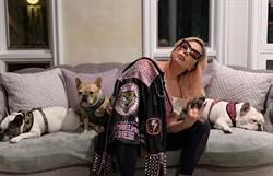 女神卡卡防疫帶頭做榜樣 宅在家曬愛犬照