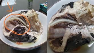 吃魚拉出巨大白蟲 老饕一看暴動